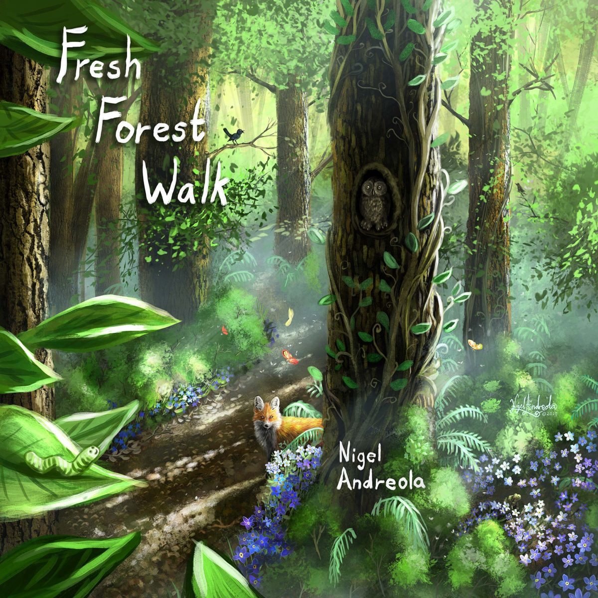 Fresh Forest Walk Nigel Andreola Cello and Harp