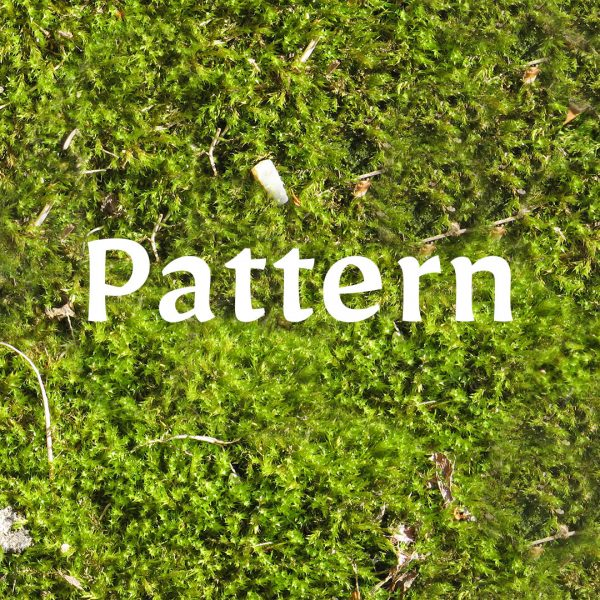 moss pattern preview